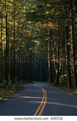 Winding road, Index, Washington - stock photo