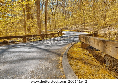 Winding road scenery from Rock Creek Park in Washington DC, USA. HDR composite from multiple exposures processed with vibrant yellow colors in the foliage for a golden surreal atmosphere. - stock photo