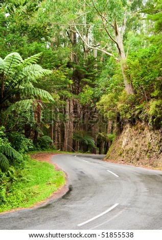 Winding road through a rainforest, New Zealand - stock photo
