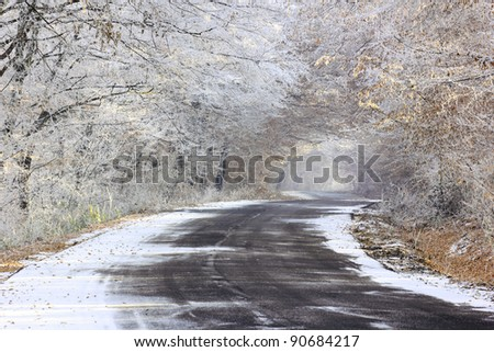 Winding road through winter forest - stock photo