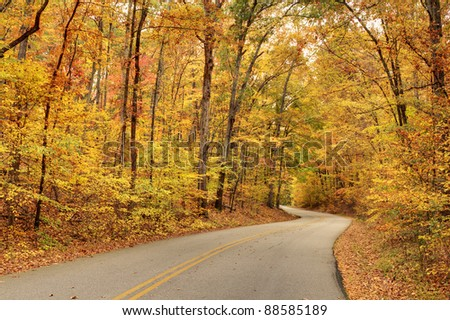 Winding road with fall foliage