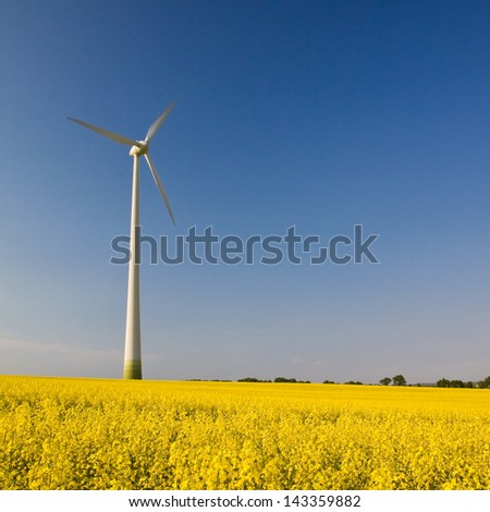 Windmill in the field of yellow rape, square landscape
