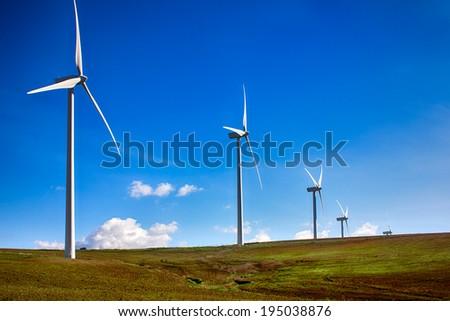 Windmills on green meadow. Cadiz, Spain - stock photo