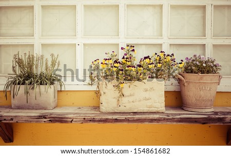 Window decorated with flower pots and flowers - stock photo