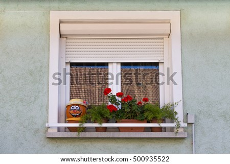 Window. Flowers on the window. Face of pumpkin on a windowsill. A window with shutters. The window of a private house.