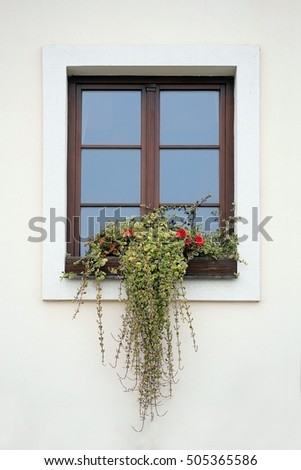Window of the house with plants