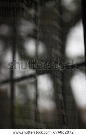 Window Reflection with courtains and plants