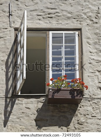 Window with a flowerpot outside in a european town