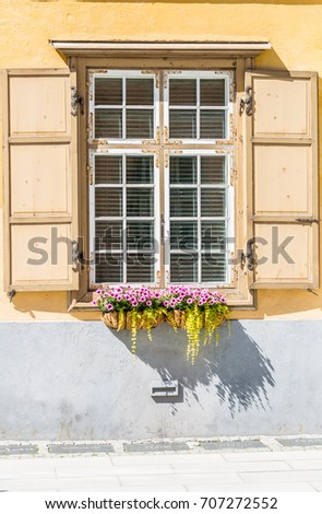 Window with flowers and flower boxes in Tallinn City