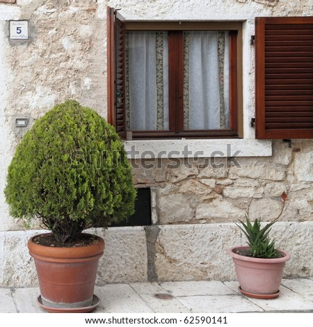 window with open shutter and cypress in pot, Tuscany - stock photo