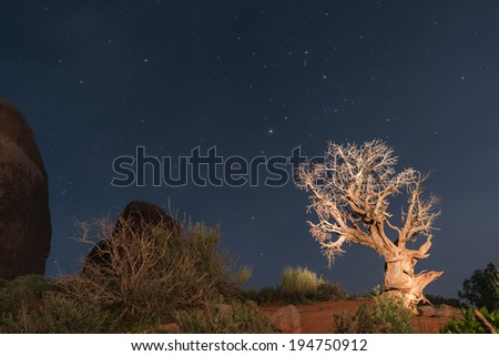 Windows Formation at Night - Arches National Park  - stock photo