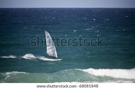 Windsurfer panorama on the sparking blue sea - stock photo