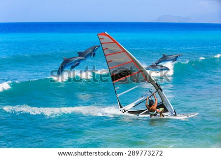 Windsurfing and dolphin - stock photo