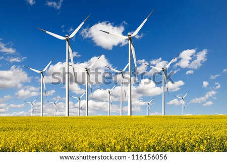 Windturbines  farm - stock photo