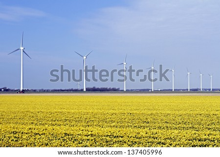Windturbines in the flower fields in the countryside from the Netherlands - stock photo