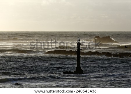 Windy Sunset on the Portuguese coast - stock photo