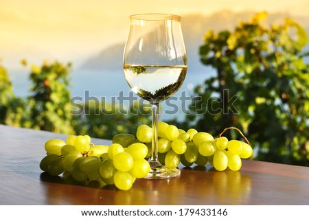 Wine and grapes. Lavaux region, Switzerland  - stock photo