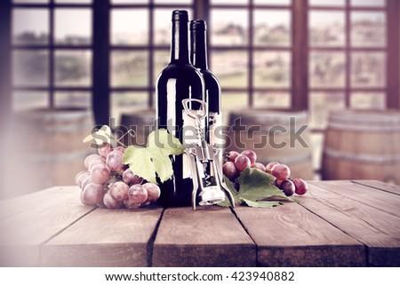wine and window  - stock photo