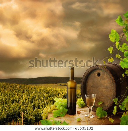 Wine, barrel and vine on background of vineyard - stock photo