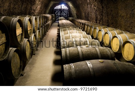 Wine barrels in cellar. Wide angle view. - stock photo