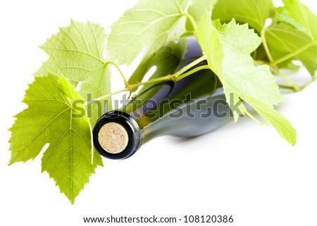 Wine bottle curled vine leaves. - stock photo