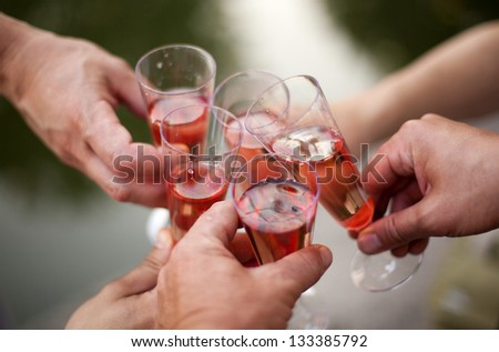 wine bottle, glass and opener - stock photo
