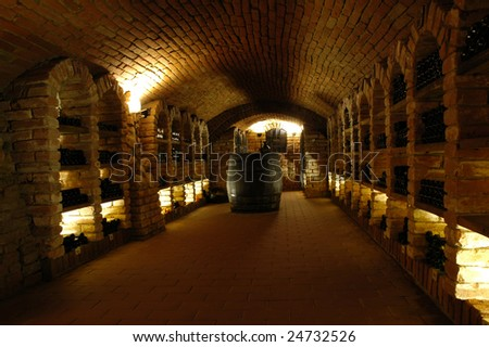 Wine bottles in the wine-vault. - stock photo