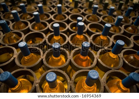 wine cellar white wine bottles - stock photo