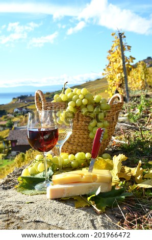 Wine, cheese and grapes on the terrace of vineyard in Lavaux region, Switzerland