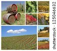 wine collage, images from tuscan farmland, Italy, Europe - stock