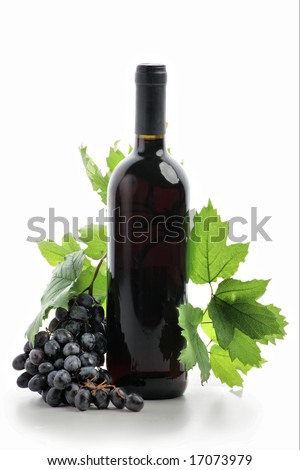 Wine composition: vine and bottle of wine - stock photo