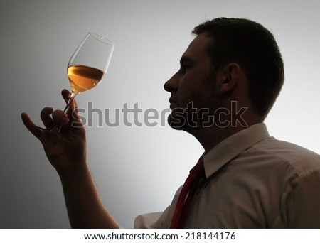 Wine expert testing wine silhouette image - stock photo
