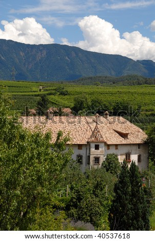 wine region in northern italy - stock photo