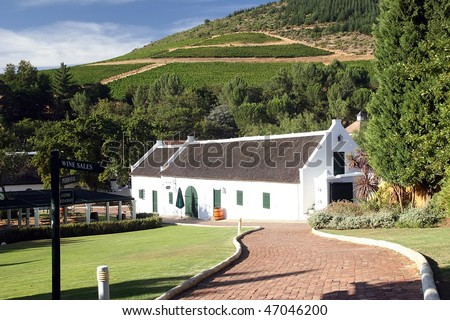 wine route in south africa - stock photo