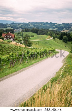 Wine Route in Southern Styria vertical view