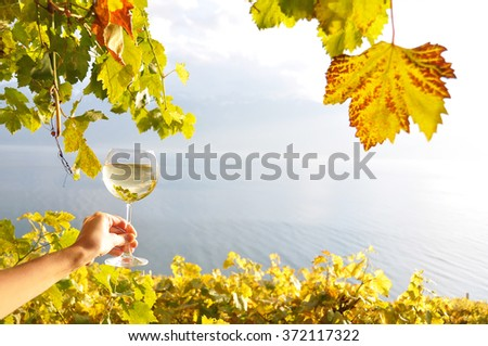 Wineglases in the hand against vineyards in Lavaux region, Switzerland