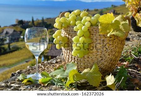 Wineglass and basket of grapes. Lavaux region, Switzerland - stock photo