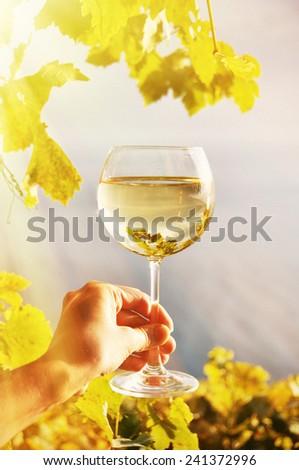 Wineglass in the hand against vineyards in Lavaux region, Switzerland - stock photo