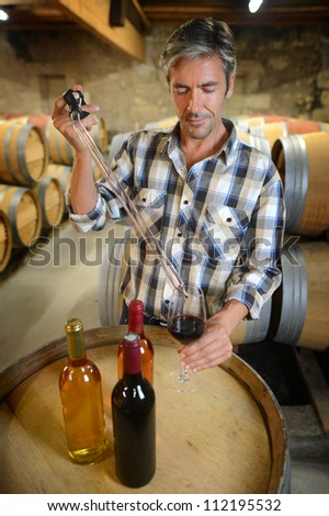 Winemaker getting sample of red wine from barrel - stock photo