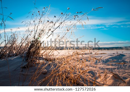 winter afternoon over misty lake with grass in the foreground and lots of snow - stock photo