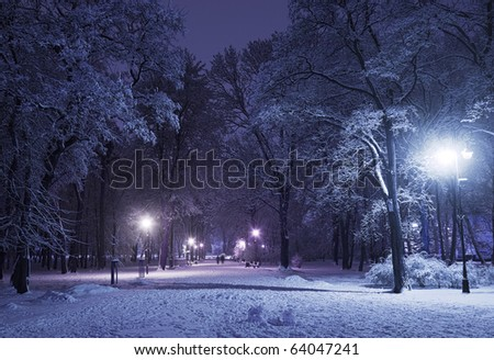 Winter alley in park and shining lanterns. Blue tone. Night shot. - stock photo