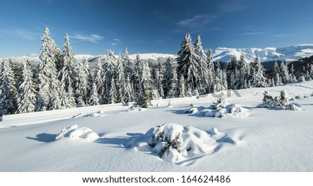 Winter alpine scenery with and frozen snow