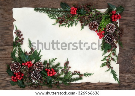 Winter and christmas background border with holly, ivy, pine cones, cedar cypress and fir on parchment paper over old oak wood. - stock photo