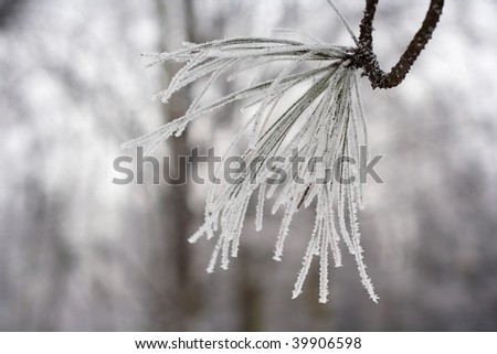 Winter at Lazienki Park in Warsaw, Poland - stock photo