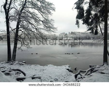 Winter at the Lakeside - stock photo