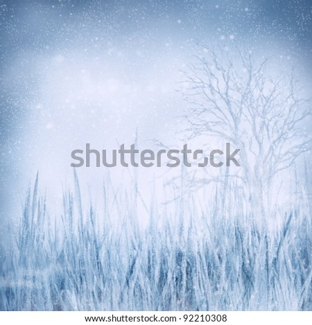 Winter background landscape with frozen grass and tree. Holiday Chritmas background with snow in the night - stock photo