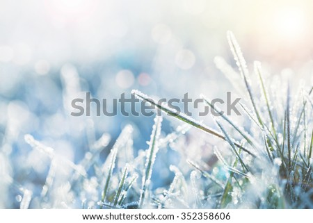 Winter background, morning frost on the grass with copy space - stock photo