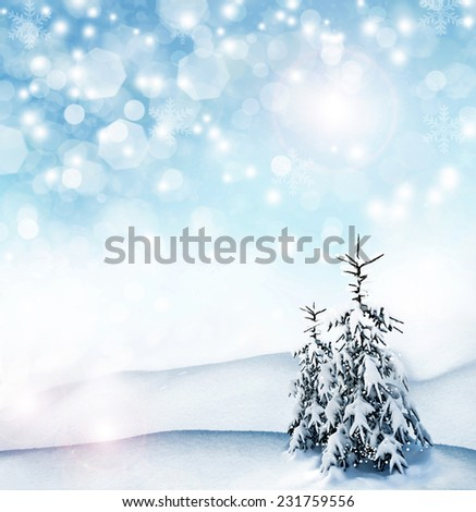 Winter background. winter forest - stock photo