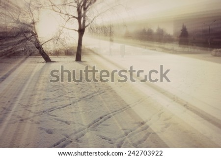 Winter background, Winter snow or Winter sun - stock photo