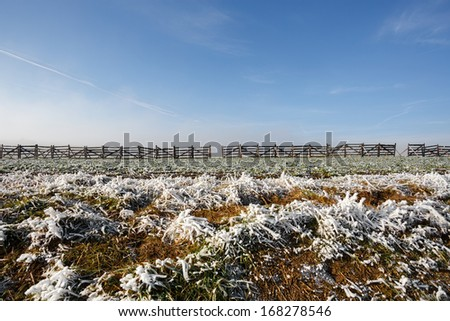 winter background with frost grass and snowdrift barrier against blue sky - stock photo
